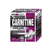 L-karnitīns (19)