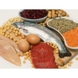 Olbaltumvielas = proteīns