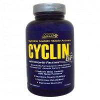 Cyclin-GF