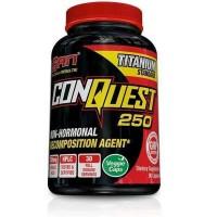 ConQuest 250